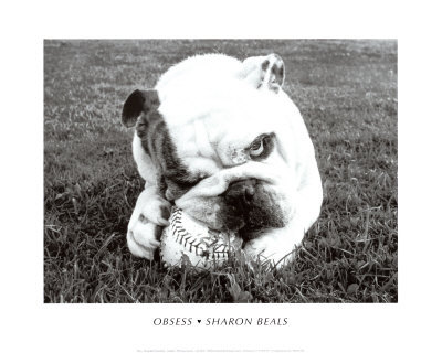 Obsess by Sharon Beals
