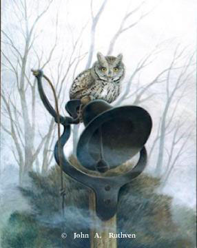 Screech Owl with Dinner Bell by John Ruthven