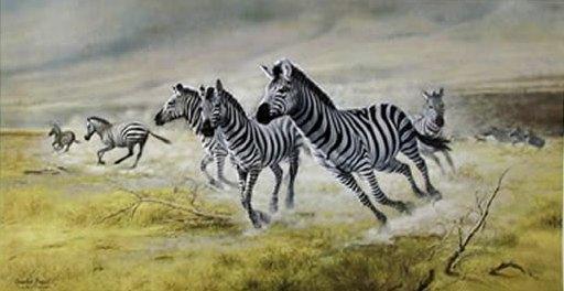 Zebras by Charles Frace