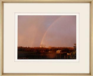 Double Rainbow by Martha Stewart