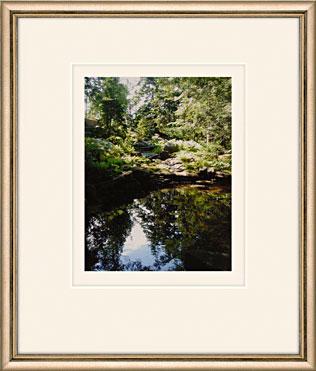 Lost Pool by Martha Stewart