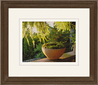 Moss Bowl by Martha Stewart