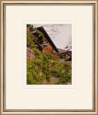 Terrace Cascade by Martha Stewart