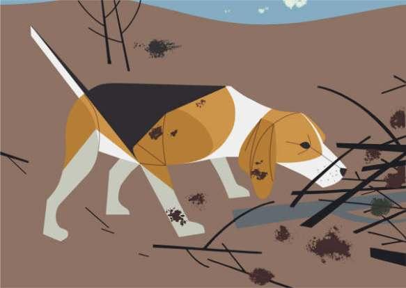 Beagle byCharley Harper