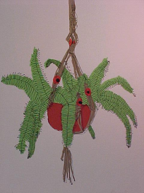 Hanging Fern by Brett Harper