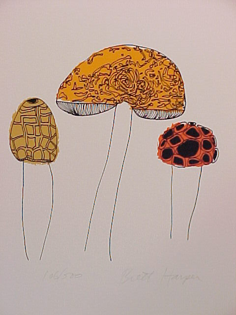 Mushrooms by Brett Harper