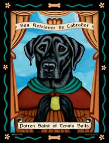 San Retriever de Labrador by Krista Brooks