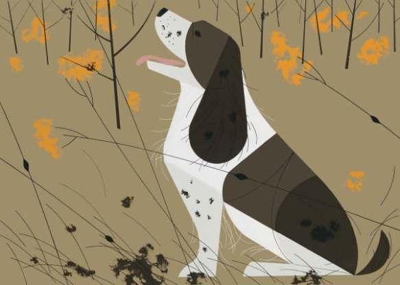 Springer Spaniel by Charley Harper