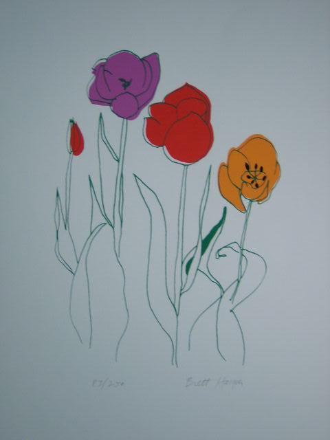 Tulips by Brett Harper