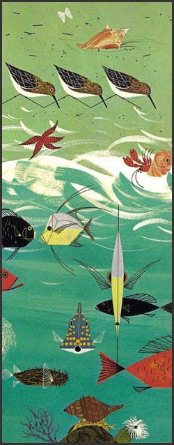 Beach Birds by Charley Harper
