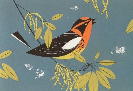 Blackburian Warbler by Charley Harper