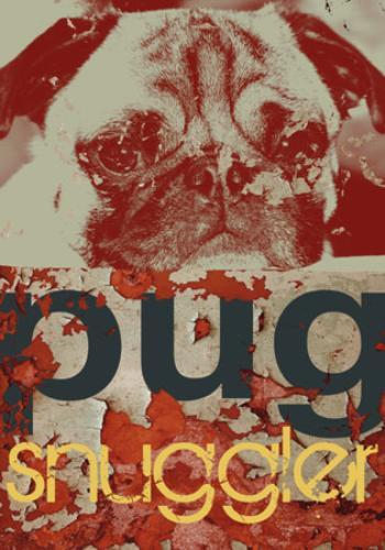 Pug Snuggler by M. J. Lew