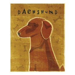 Dachshund by John W. Golden