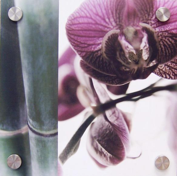 Bamboo I by Jennifer Broussard