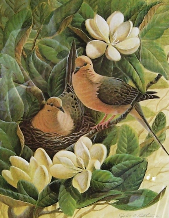 Mourning Doves by John Ruthven
