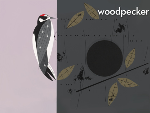 Charley Harper's Peekaboo Forest by Night & Day Studios