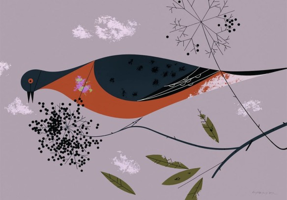 Passenger Pigeon by Charley Harper