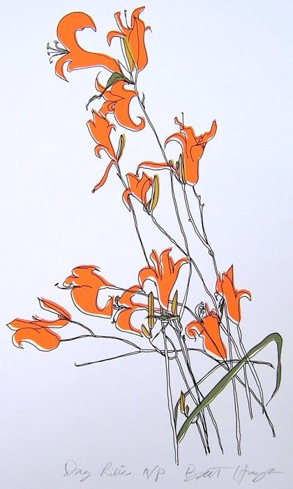 Daylilies by Brett Harper