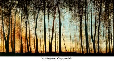 Golden Forest by Carolyn Reynolds
